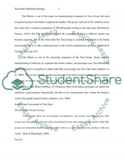 Tata International Marketing Analysis essay example