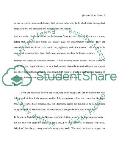 Essay review website