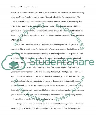 Professional Nursing Organization essay example