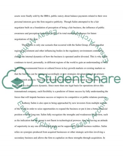 International business strategy essay example