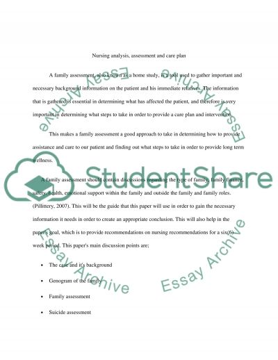 Nursing Analysis, Assesment and Care Plan essay example