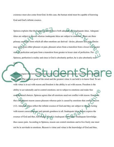 SpinozaBerkeley essay example