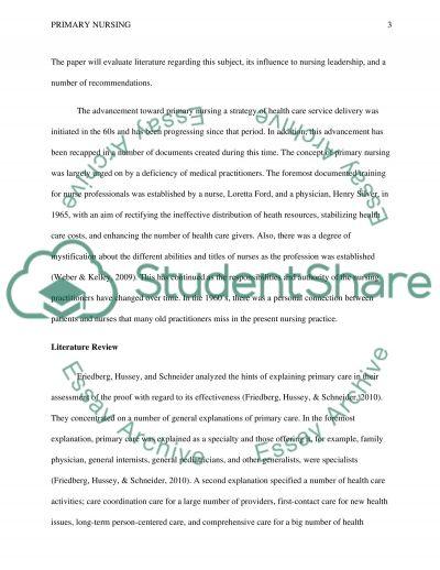 Primary Nursing essay example
