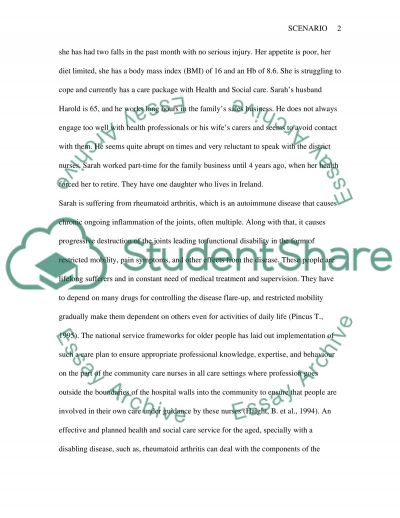 Nursing Care essay example