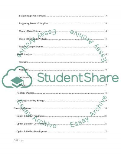 Marketing, Assignment essay example