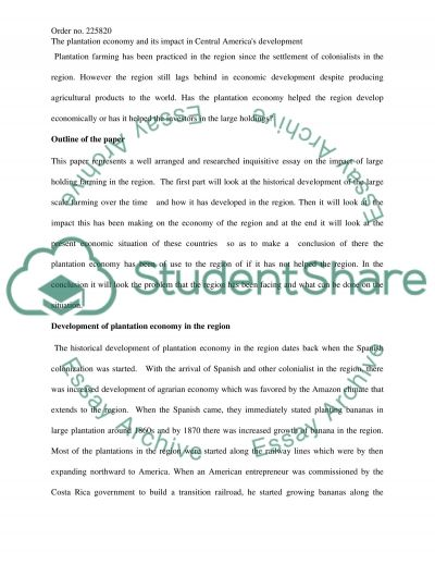 Plantation Economy essay example