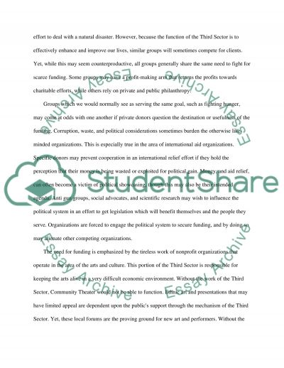 The Third Sector essay example