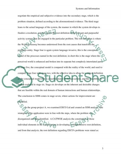 Information Systems and Organisation essay example