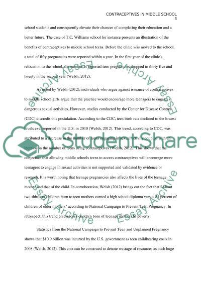 Middle school essay example