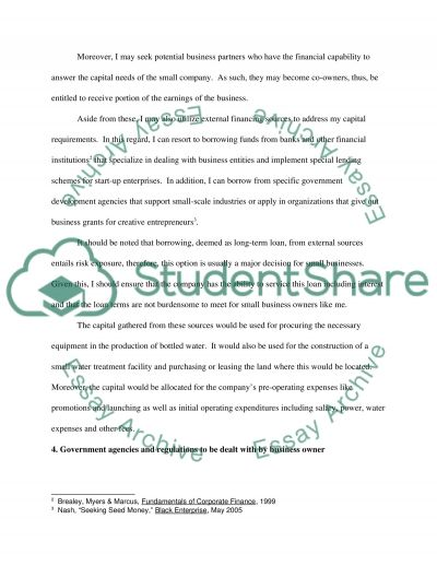 Starting A Business Essay essay example