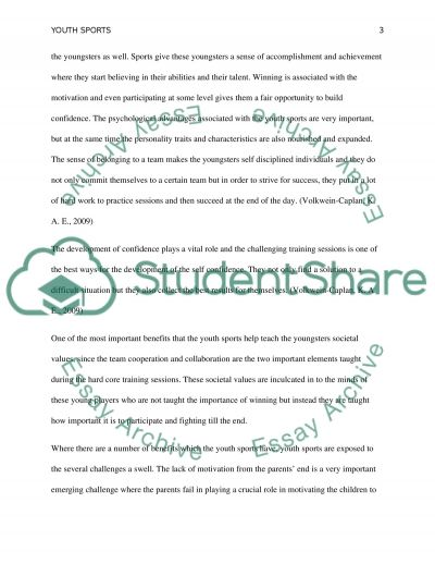 Youth Sports essay example