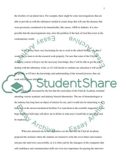 CityLab Academy essay example