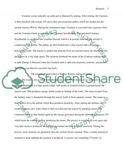 Nuclear Power essay example