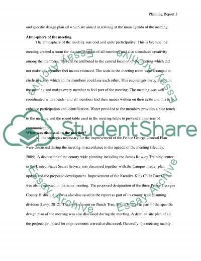 Planning Report essay example