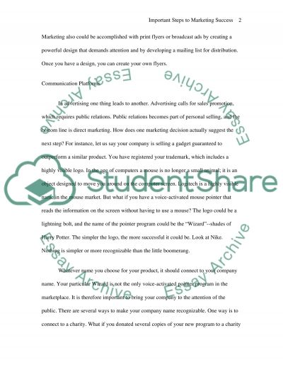 Important Steps to Marketing Success essay example