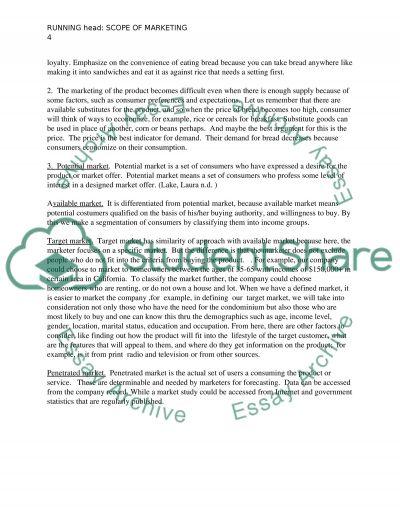 Scope of marketing essay example