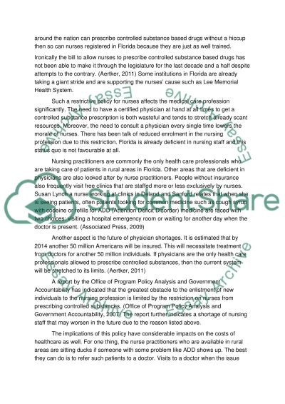 Florida Legislative Policy essay example