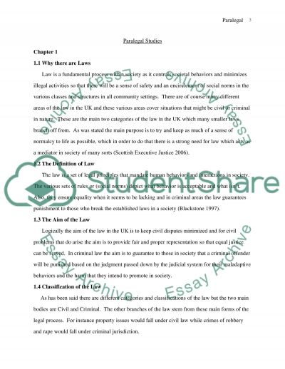 Utilization of the law and its processes essay example