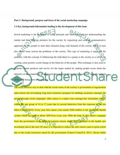 Individual Assessment: A report on Social Marketin Campaign essay example