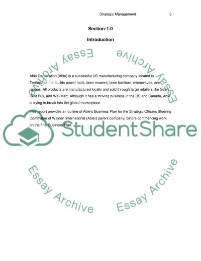 Strategy Implementation and Control IP essay example