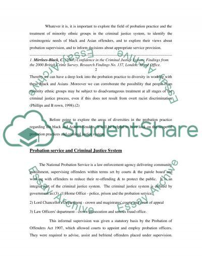 PROBATION PRACTICE IN ENGLAND essay example