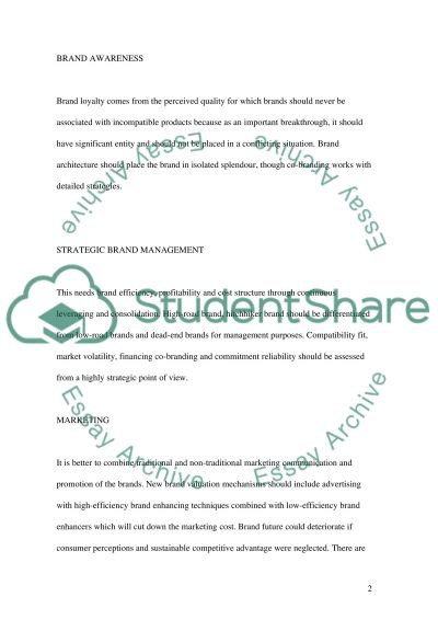 Branding Essay essay example