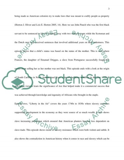 career comes before marriage essay example