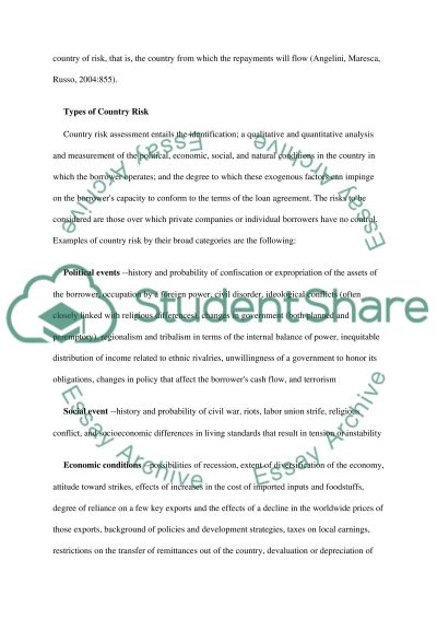 Risk and Risk Management essay example