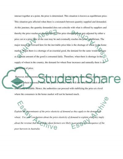Micro Economics College Essay essay example