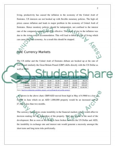 Exchange Rate Risk in the UAE essay example