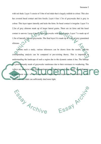 Field trip essay example