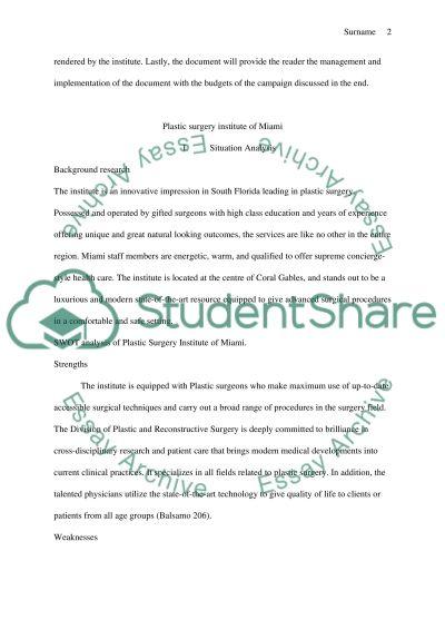 Mkt386 group presentation essay example