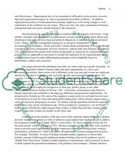 Individual Paper essay example