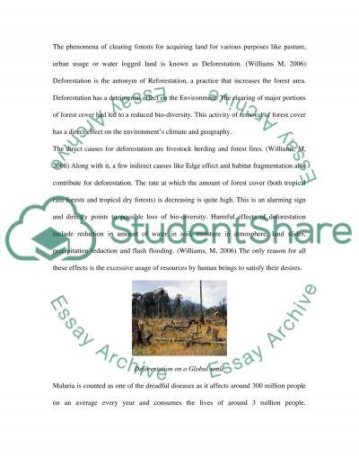 Deforestation and Malaria essay example