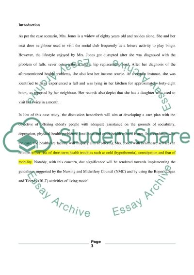 Care plan essay example
