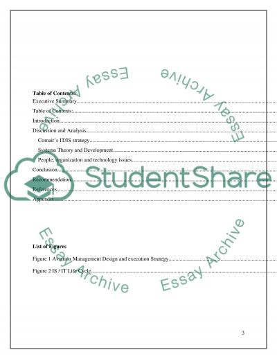 Information Systems Case Study essay example