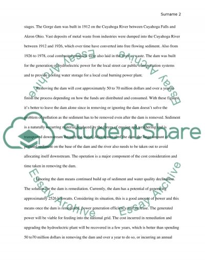 Dam paper essay example