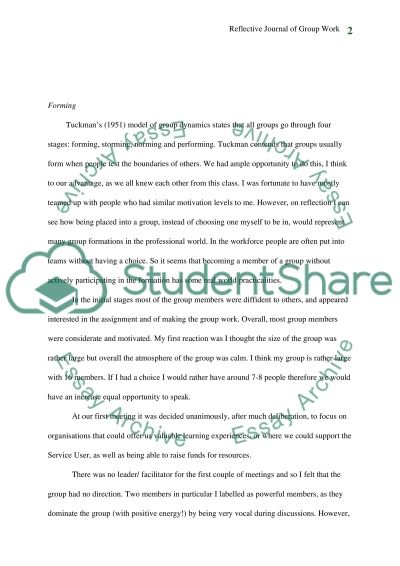 Practice & Communication In Social Work Working In Groups essay example