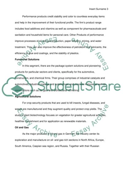 BASF AG - The Nanjing Project Report essay example