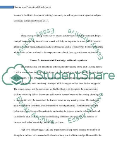 Plan for your Professional Development essay example
