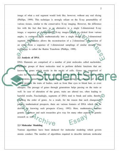 Medicine and Mathematics essay example