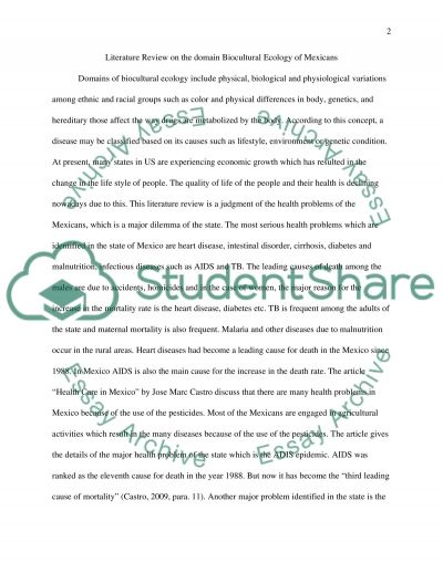 Literature Review: Mexicans essay example