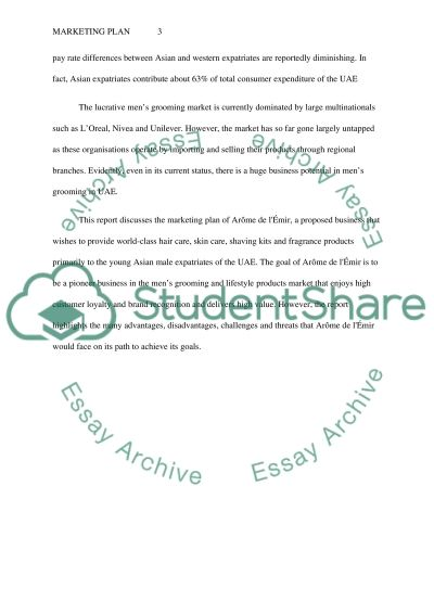 marketing plan Research Paper example