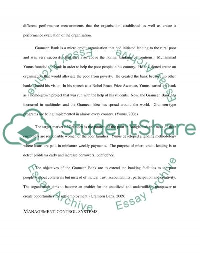 Management Control Systems essay example