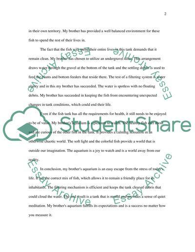 Evaluation Essay Any topic