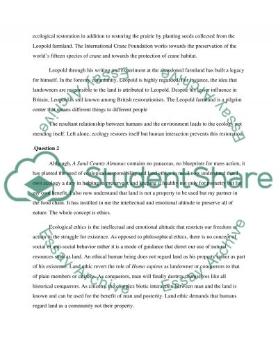 SUMMARY essay example