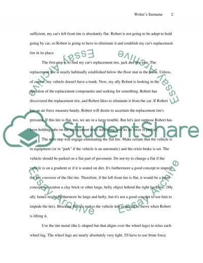 project 3 Essay example