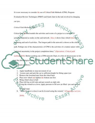 Assignment( PROJCT MANAGEMENT) essay example
