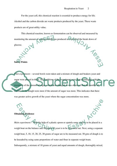 Thesis writing helper job application template