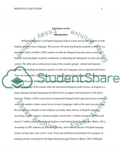 Literature Review essay example